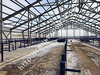 Строительство МТФ на 526 голов с ДМБ и доильным залом Ёлочка 2х14_5