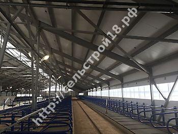 Строительство МТФ на 526 голов с ДМБ и доильным залом Ёлочка 2х14_7