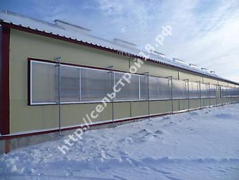 Строительство молочного комплекса на 800 голов_11