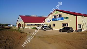 Строительство молочного комплекса на 800 голов_13