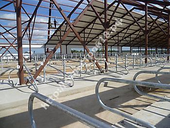 Строительство молочного комплекса на 800 голов_4