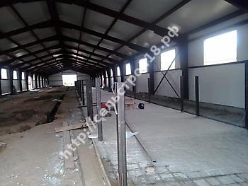 Строительство молочного комплекса на 960 голов_1