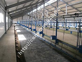 Строительство молочно товарной фермы КРС на 400 голов_6